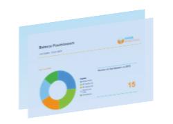 Exemple de rapport FI-AP