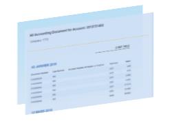 Exemple de rapport FI-GL