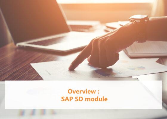 Overview SAP SD module