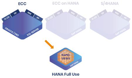 Références RapidViews ECC et HANA Full Use