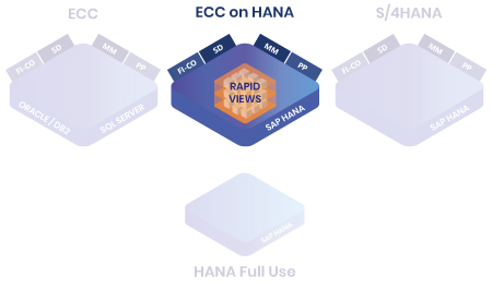 Références RapidViews ECC on HANA