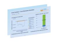 Rapport analyse des coûts RapidViews FICO