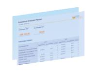 Rapport analyse reel et prévu des immobilisations RapidViews FICO