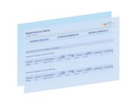 Rapport calendrier livraison par article RapidViews SD