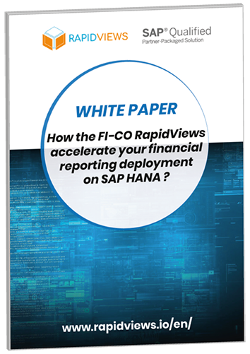 White Paper RapidViews FI-CO