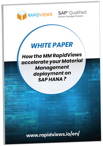 White Paper RapidViews MM