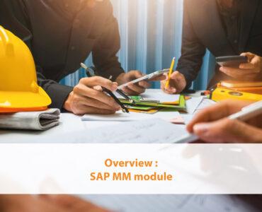 Overview SAP MM module