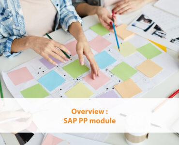 Overview SAP PP module
