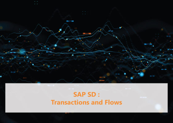 SAP SD Transactions and Flows