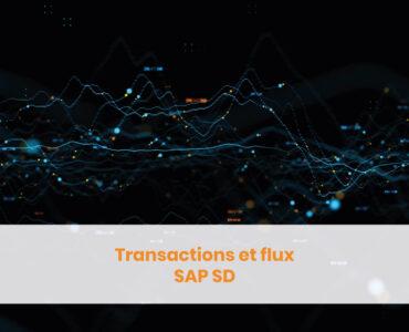 Transactions et flux SAP SD
