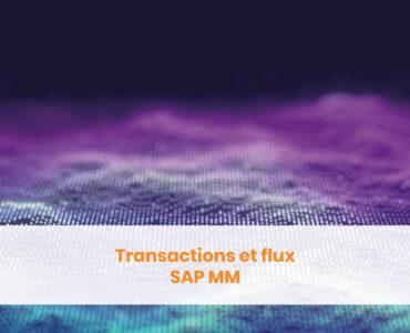 Transactions et flux SAP MM