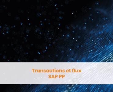 Transactions et flux SAP PP