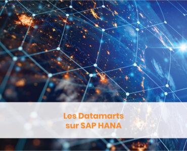Datamarts SAP Hana RapidViews