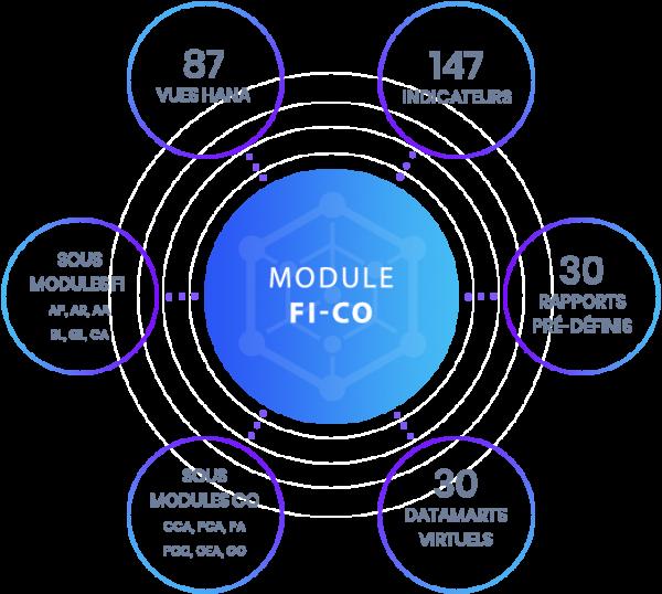 Module RapidViews FI-CO
