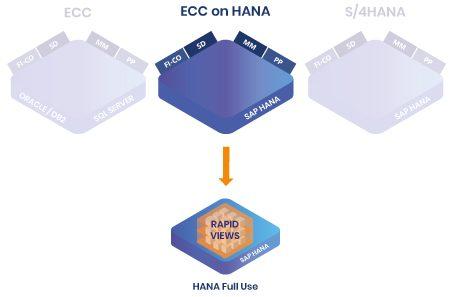 Références RapidViews ECC on HANA et HANA Full Use
